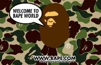 bape00101.jpg